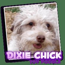 dixie-chick
