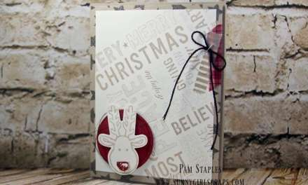 Merry Medley Rudolph the Red Nosed Reindeer for PCC218