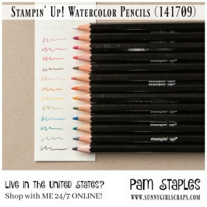 Create gorgeous, hand stamped cards with a watercolor effect using the Stampin' Up! Watercolor Pencils that coordinate beautifully with the Stampin' Up! Color Families. Order today from Pam Staples, SunnyGirlScraps at www.sunnygirlscraps.com #watercolor #watercolorpencils #cards #sunnygirlscraps
