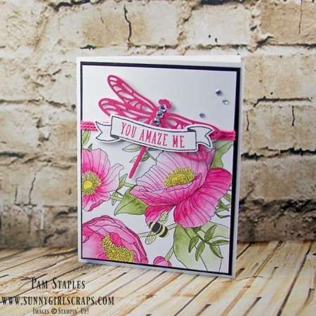 Dragonfly Dreams with Sale-A-Bration Inside The Lines Designer Series Paper. Card created by Pam Staples