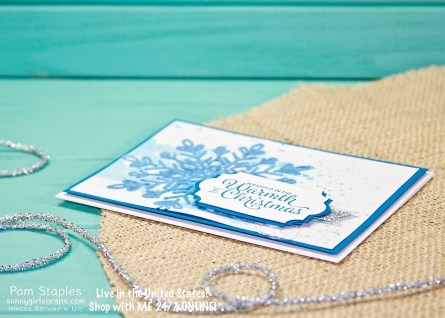 Embossing Paste technique paired with the Winter Wonder Embossing Folder.