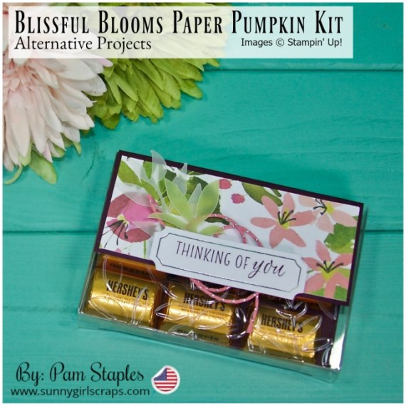 Acetate Card Boxes cut in half with a blackberry bliss flap featuring the Blissful Blooms Paper Pumpkin Kit