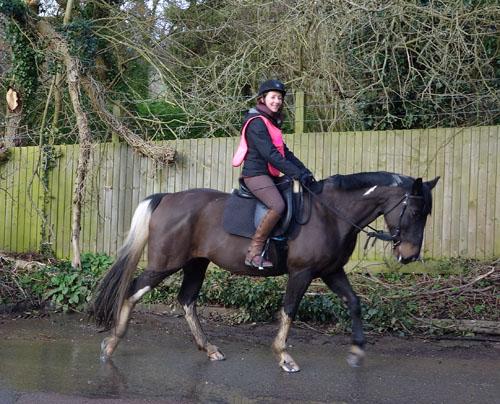 Woodman Pub Horse