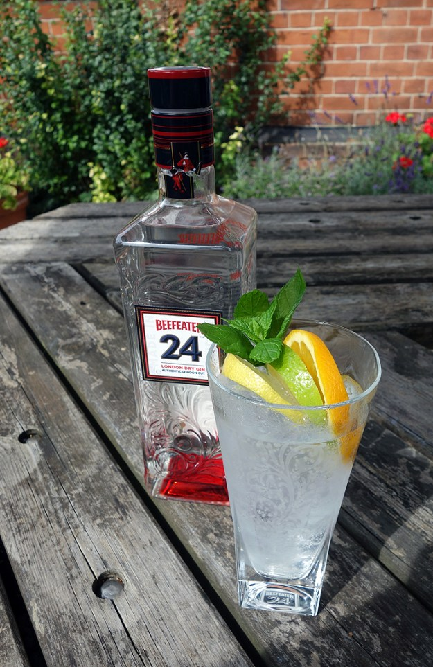 London Beefeater Gin and Tonic