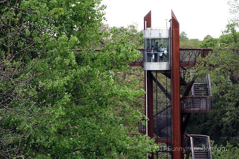 Tips Visiting Kew Gardens London Treetop Walkway