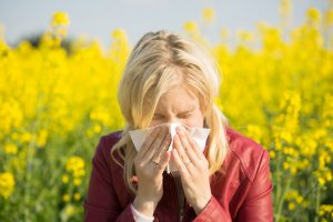 Woman with hay fever sneezing in a field of rape.