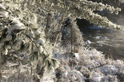 Snow-Weighdown1