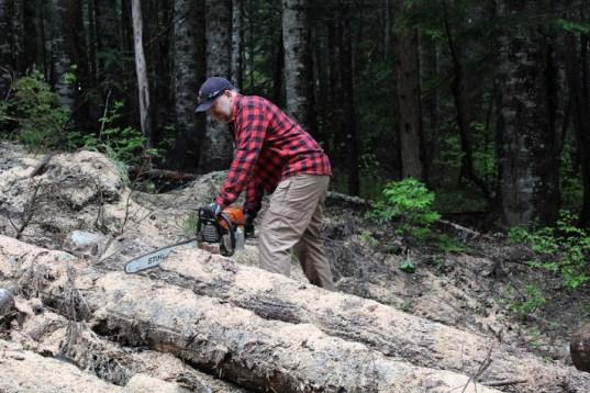 wood 12