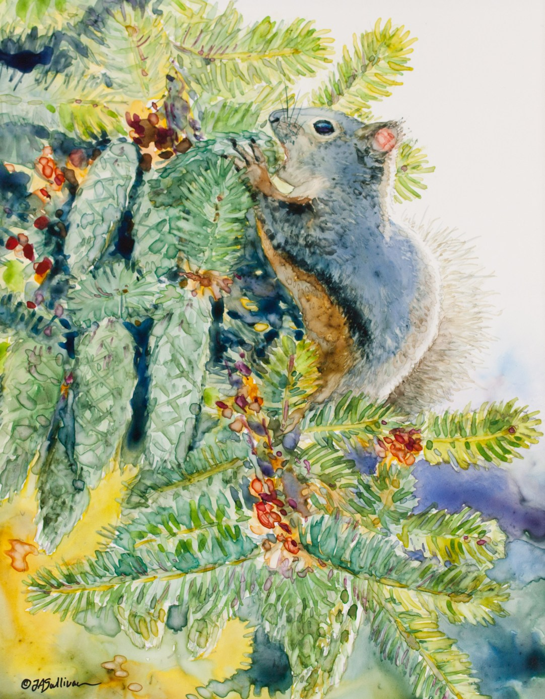 squirrel_in_the_firs