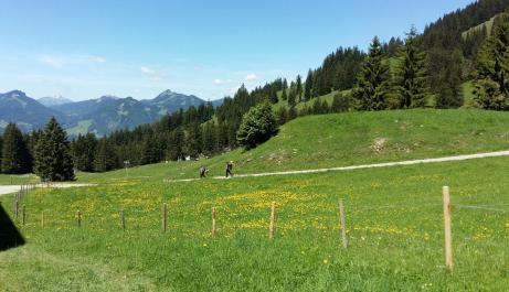 Wanderwege auf dem Nebelhorn