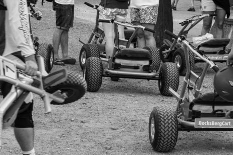 hahnenklee bocksberg carts