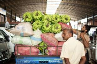 dambulla market
