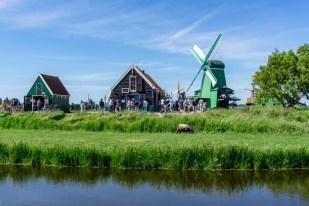 amsterdam ausflug zaanse schans