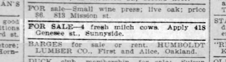 1905 classified advertisement from SF Call.