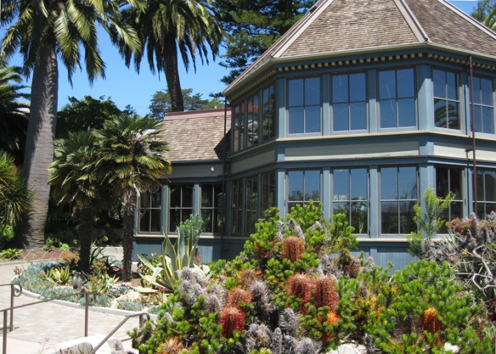 Sunnyside Conservatory, Monterey Blvd, San Francisco CA. Photo: Amy O'Hair.