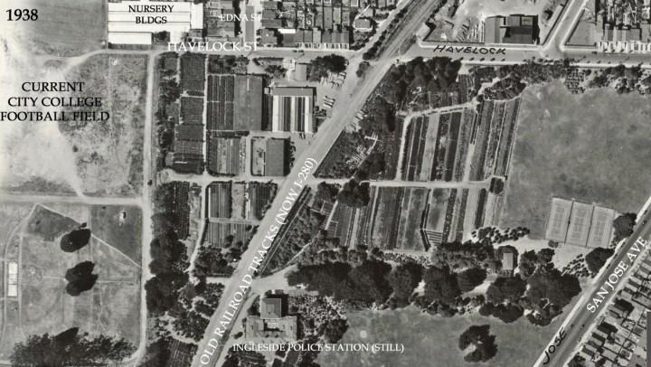 1938-Veg-Gardens-HavelockSt