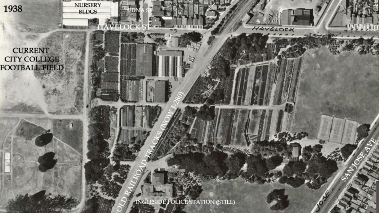 1938-Veg-Gardens-HavelockSt