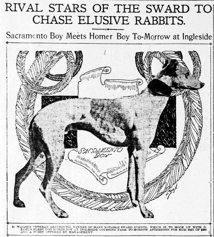 1905Oct21-Call-p11-Ingleside-Coursing-dog-image
