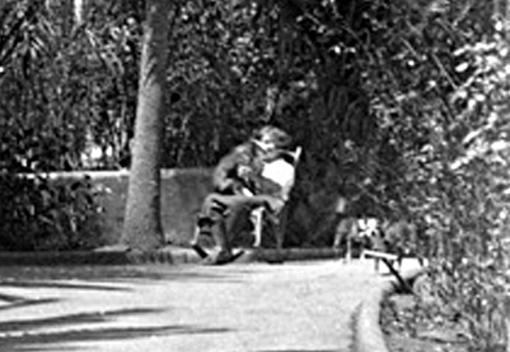 1914-Sunnyside-Conservatory-walkway-crop000_wnp26.1007