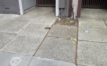2019. The sidewalk in front retains some of the original redwood framed, rough-style concrete squares from 1963. Photo: Amy O'Hair