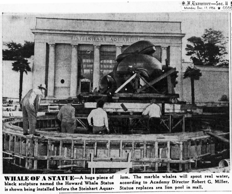 SF Examiner, 17 Dec 1956. Out of storage, the Whales is delivered to the Steinhart Aquarium. Newspapers.com