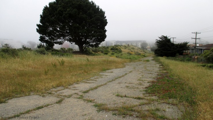 View of lower path on west edge. Balboa Reservoir, May 2020. Sunnyside History Project. Photo: Amy O'Hair