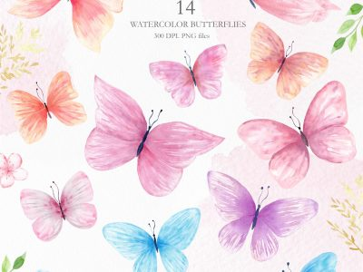watercolor-flora-butterfly-clipart