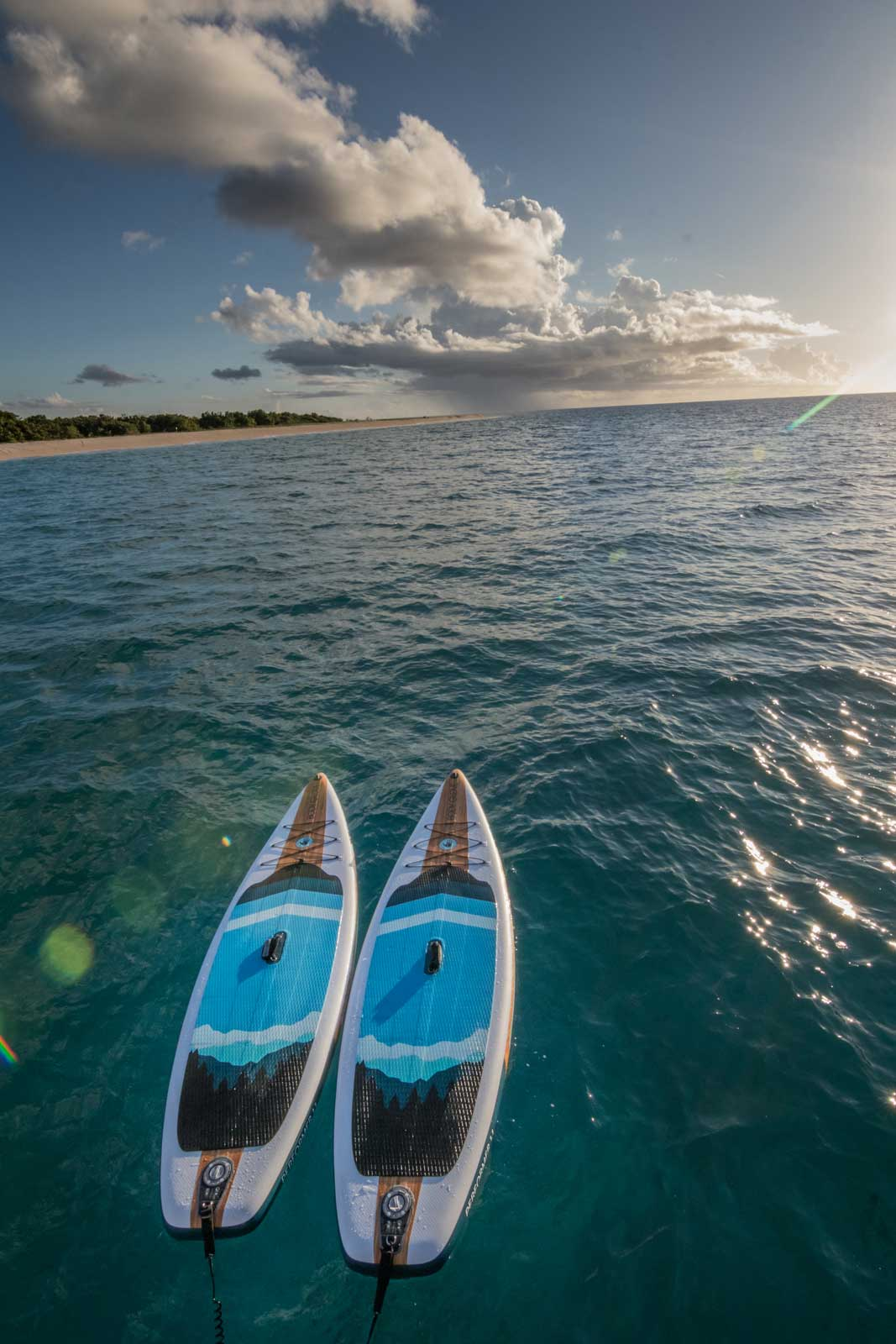 Two paddle boards with graphics depicting dark blue and black mountains drifting in the sea.