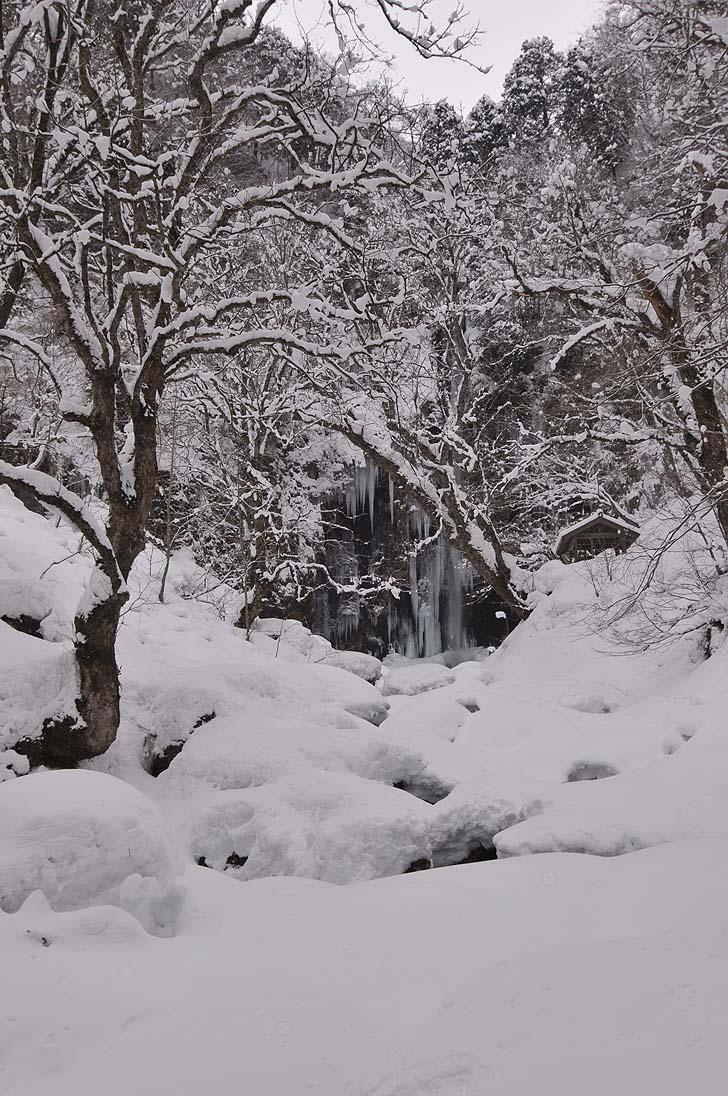 阿弥陀ヶ滝の遠景2