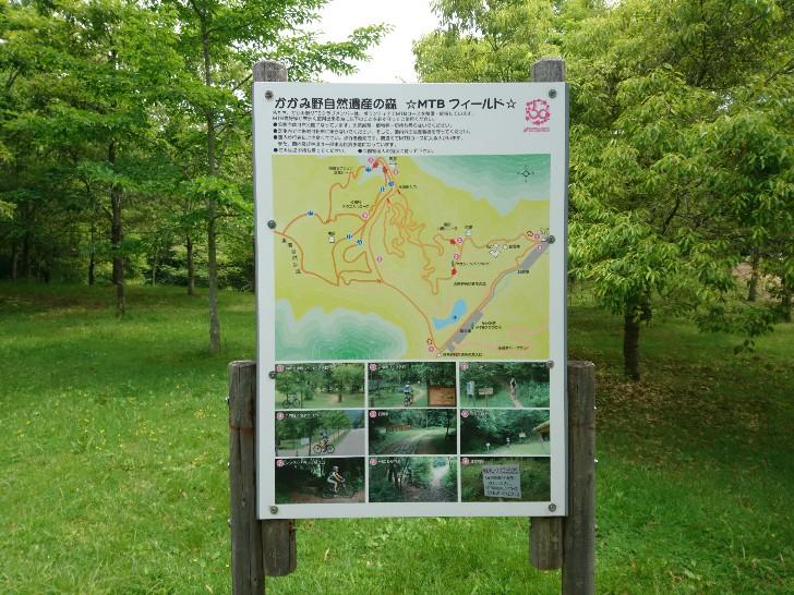 各務野自然遺産の森