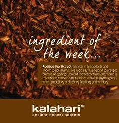 rooibos-extract