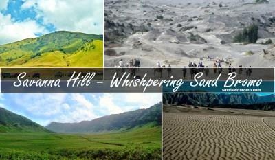 savanna hill and whishpering sand mount bromo