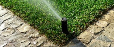 Home Law Sprinkler Systems New Port Richey