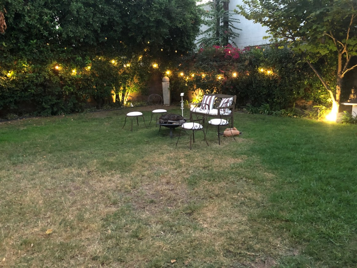 Agnes-Yard_8588