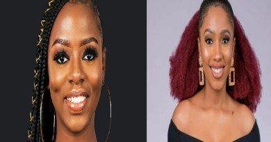 Diane evicted from #BBNaija, Mercy is last woman standing