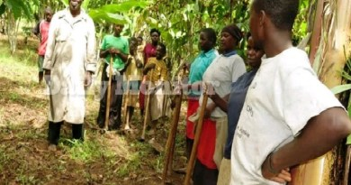 Man, 94 marries 4 new wives after 100 children and still wants more (PHOTOS)