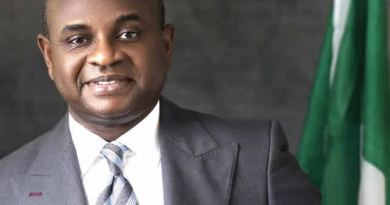 """There is nothing like 'Nigerian Igbo', Moghalu under fire"