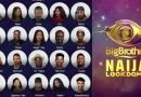 BBNAIJA 2021: Meet the first First housemate to be verified on Instagram