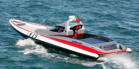 Cougar R12 Viper racing rib 'ARGENTUM'
