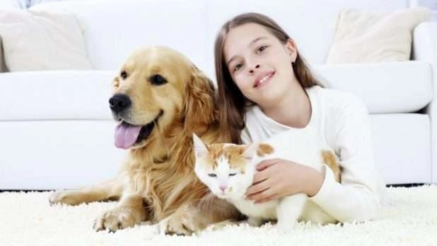 Girl with pets – Common AC problems - Fort Myers - Sunset Air & Home Services