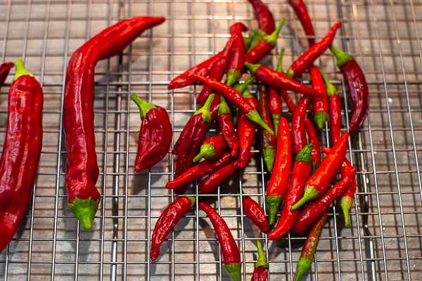chile peppers spread out on wire rack
