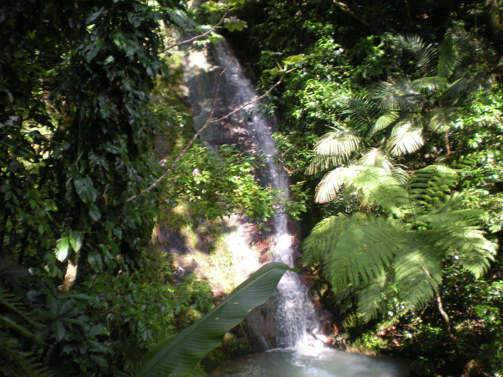 St Mark's Waterfalls 3