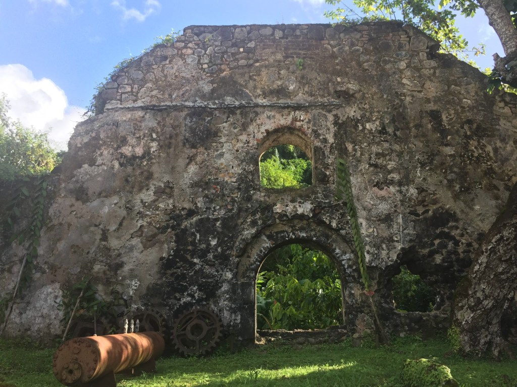 Top Ten Things to Do in St. Mark's Grenada 6
