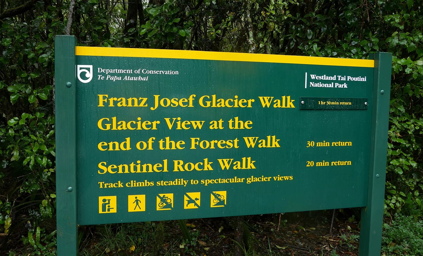 There are a few options for hiking at Franz Josef Glacier