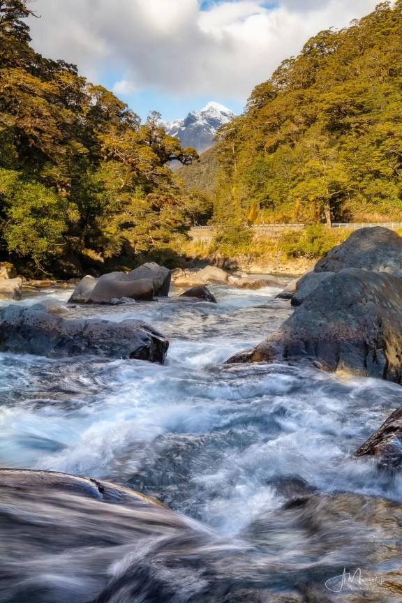 Hollyford River, Milford Sound road, New Zealand