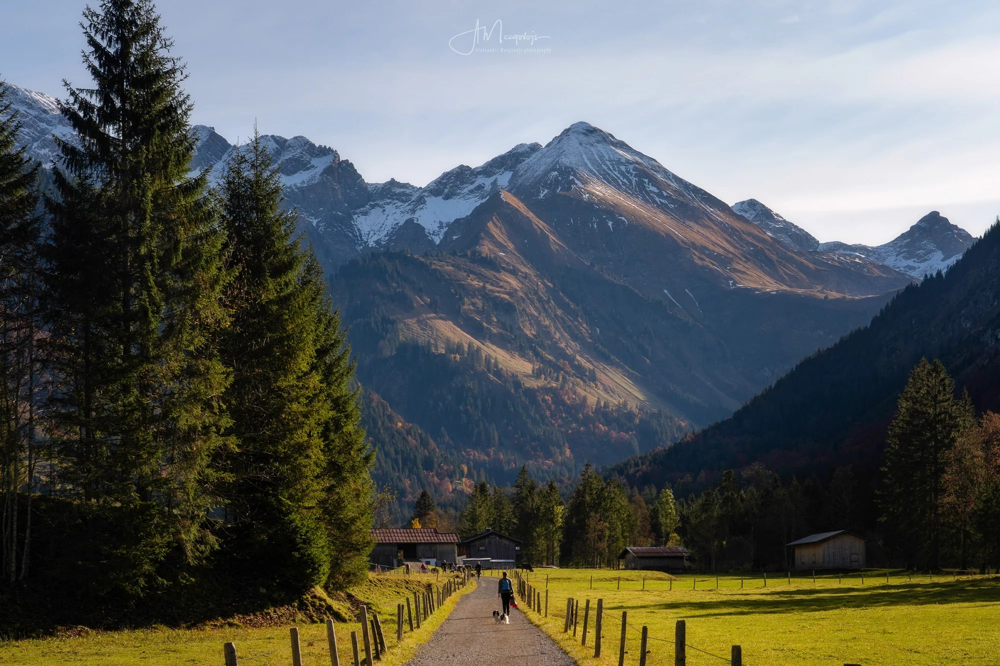 Afternoon in the Stillachtal Valley, Oberstdorf, Allgäu