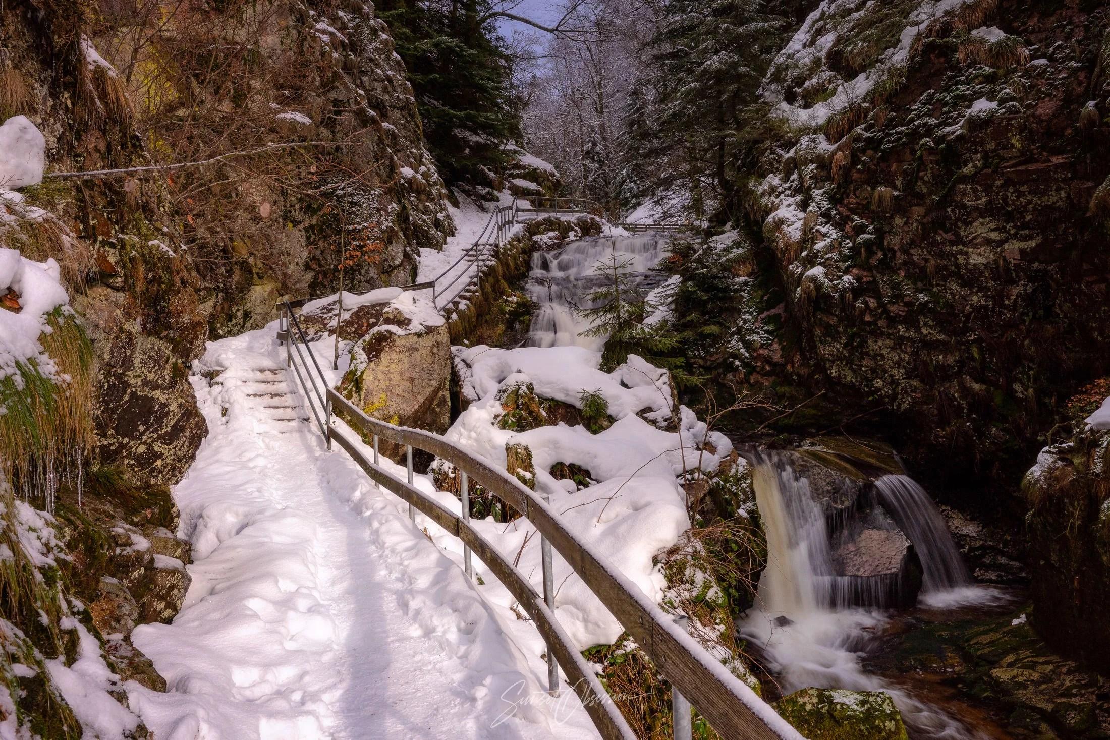 Снежный ясный день в Шварцвальде