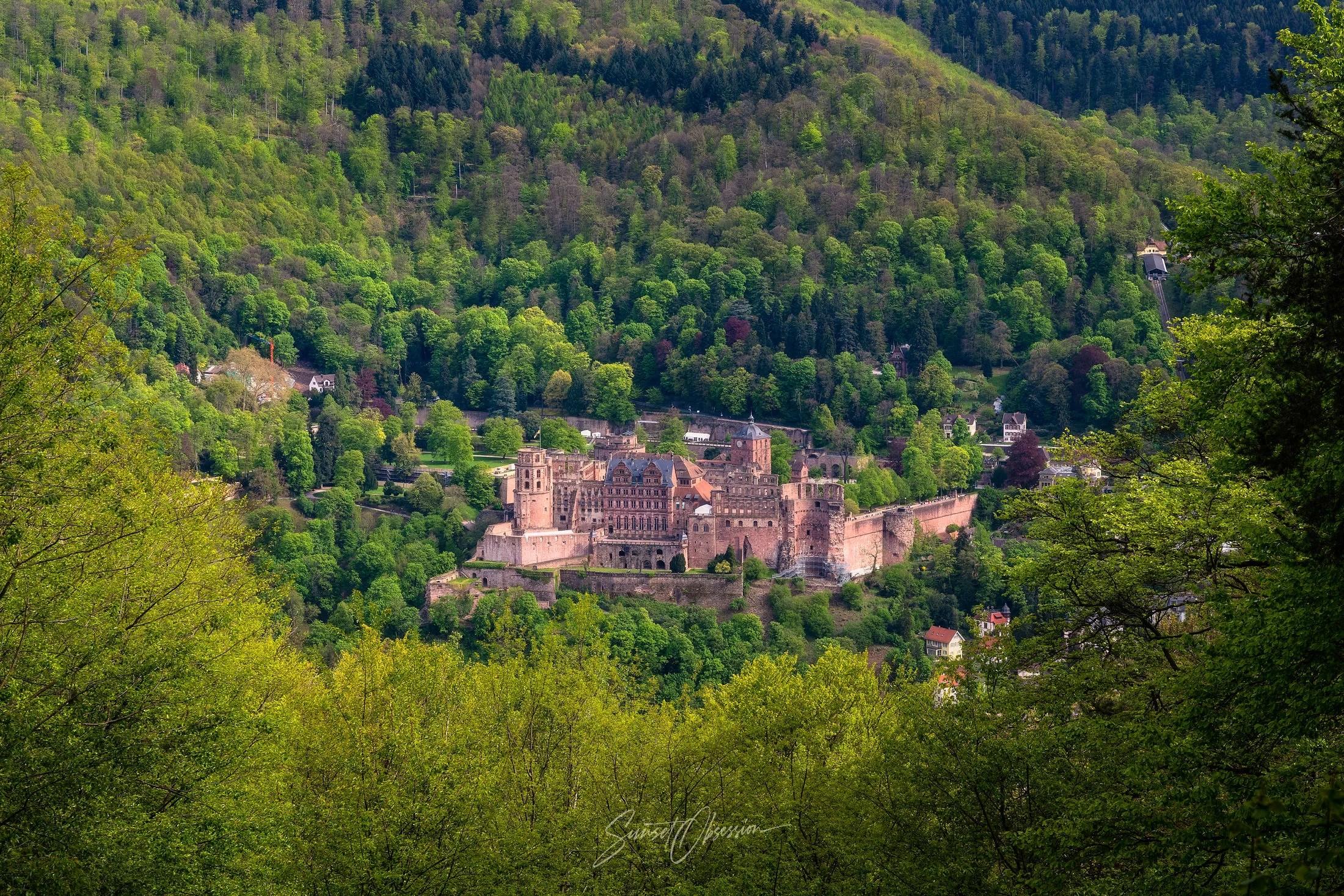 Вид на гейдельбергский замок с башни Св. Стефана