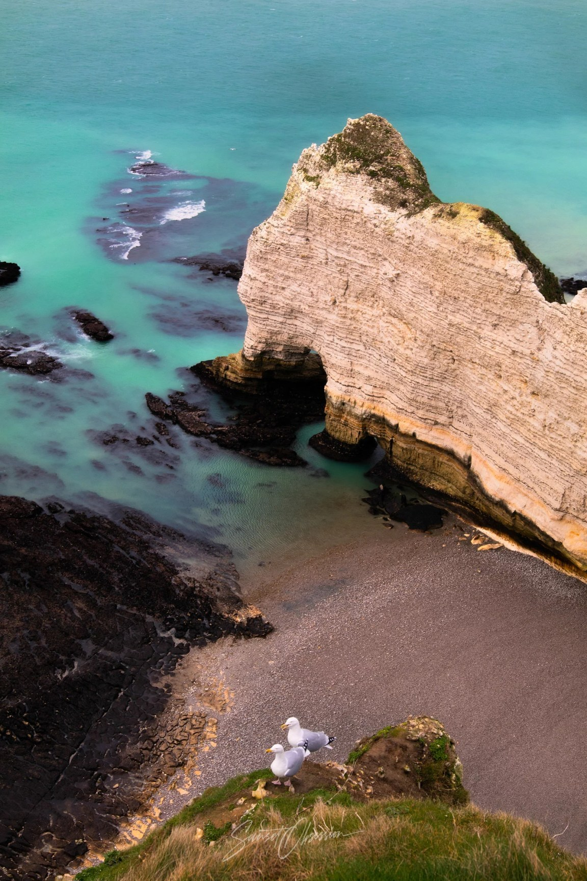 Seagulls in front of the Porte d'Amont natural arch, Etretat, France