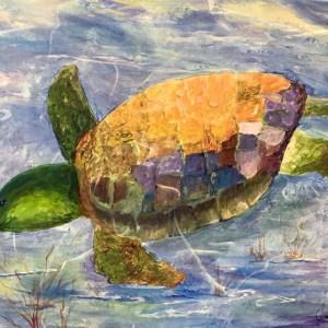 pnp-turtle-janie